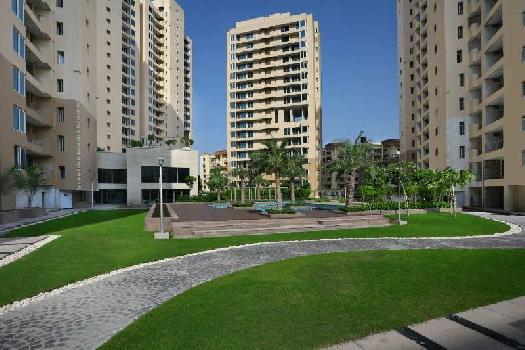 3 BHK 2548 Sq.ft. Residential Apartment for Sale in Sector 50 Noida