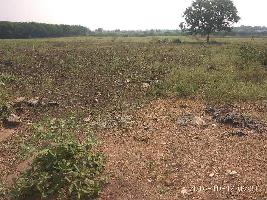 Farm Land for sale in Medak | Buy/Sell Agricultural Land in
