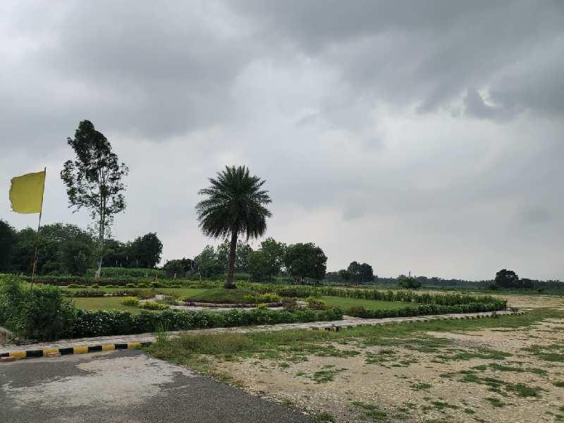 1250 Sq.ft. Residential Plot for Sale in Mohanlalganj, Lucknow