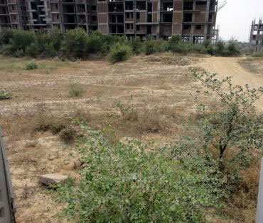 Residential Land / Plot for Sale in Sector 62, Faridabad - 358 Sq. Yards