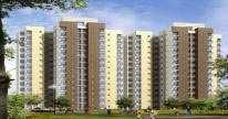 3 BHK Flat for Sale in Sector 117, Noida
