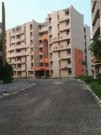 3 BHK 1484 Sq.ft. Residential Apartment for Rent in Roshnabad, Haridwar