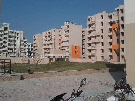 2 BHK 1080 Sq.ft. Residential Apartment for Rent in Roshnabad, Haridwar