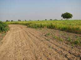 5500 Sq. Meter Industrial Land for Sale in Panoli GIDC, Bharuch