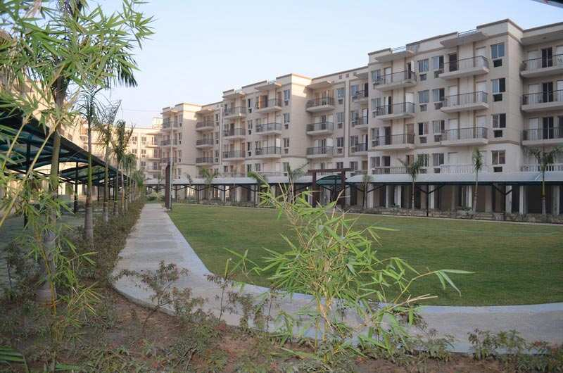 3 BHK Flats & Apartments for Sale in Sector 92, Gurgaon - 1295 Sq. Feet