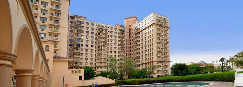 2 BHK Flats & Apartments for Rent in Dlf City Phase Ii, Gurgaon - 1170 Sq. Feet