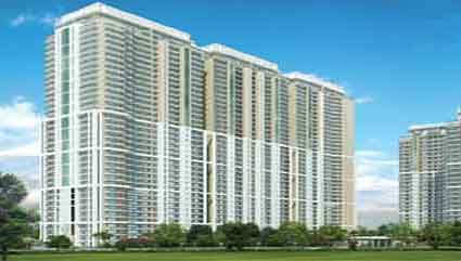 3 BHK Flats & Apartments for Sale in Sector 54, Gurgaon - 2644 Sq.ft.