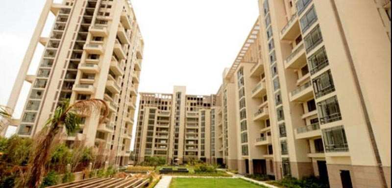 3 BHK Flats & Apartments for Sale in Sector 50, Gurgaon - 3670 Sq. Feet
