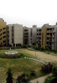 3 BHK Flat for Rent in Panchkula Extension, Panchkula