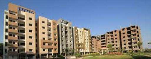 2 BHK Flat for Sale in Salaiya, Bhopal