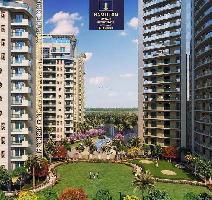 3800 Sq.ft. Penthouse for Sale in Urban Estate Phase 2, Jalandhar