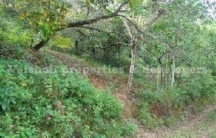 5 Cent Residential Plot for Sale in Thondayad, Kozhikode
