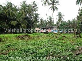 28 Cent Residential Plot for Sale in Karaparamba, Kozhikode