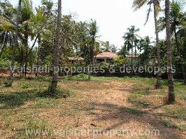 20 Cent Commercial Land for Sale in Thondayad, Kozhikode