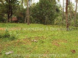 3 Acre Commercial Land for Sale in Thondayad, Kozhikode