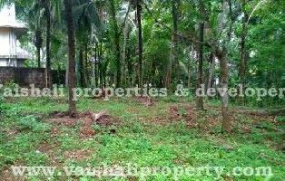 9 Cent Residential Plot for Sale in Pottammal, Kozhikode