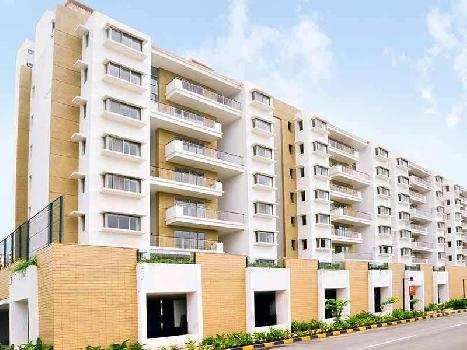 1 BHK 506 Sq.ft. Residential Apartment for Sale in Dombivli, Thane