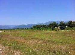800 Bigha Farm Land for Sale in Bundi Road, Kota