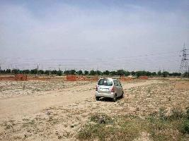 500 Sq. Yards Commercial Land for Sale in Noida Expressway, Noida