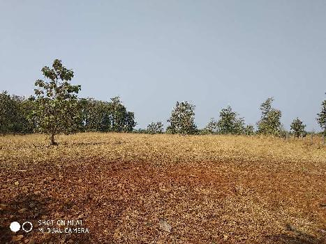 3 Acre Residential Plot for Sale in Wada, Palghar