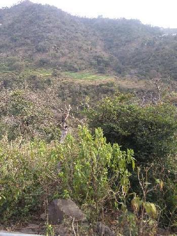 3 Bigha Farm Land for Sale in Morni Hills, Panchkula