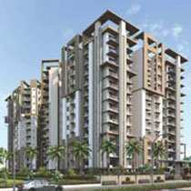 1 BHK Flats & Apartments for Sale in Alwar Road, Bhiwadi - 60 Bigha