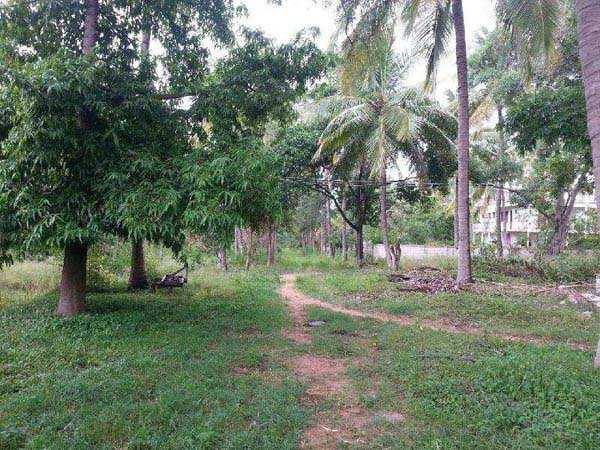 1 BHK Farm House for Sale in Magadi Road, Bangalore - 5445 Sq. Feet
