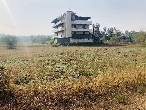 5000 Sq.ft. Residential Plot for Sale in Alibag, Raigad