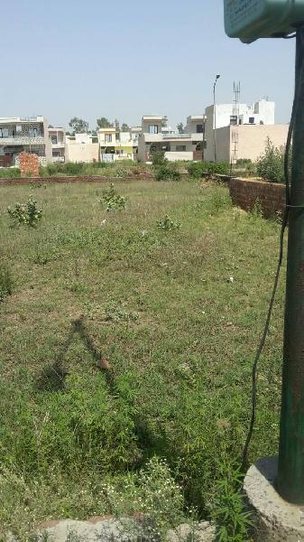 Residential Plot for Sale in Jalandhar - 1250 Sq. Feet