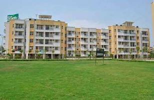2 BHK Flat for Rent in Ambala City, Ambala