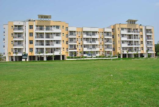2 BHK 1322 Sq.ft. Residential Apartment for Rent in Ambala Chandigarh Expressway