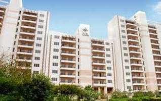 1210 Sq.ft. Flat for Rent in Sector 86, Faridabad