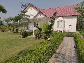 1008 Sq. Yards Farm Land for Sale in Sector 135 Noida
