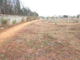 5600 Sq. Meter Industrial Land for Sale in Ecotech, Greater Noida