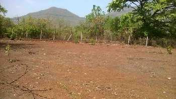 1000 Sq.ft. Residential Plot for Sale in Sailana, Ratlam