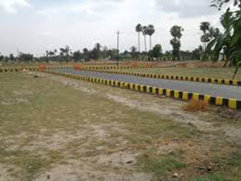 Residential Land / Plot for Sale in Lucknow - 2450 Sq.ft.