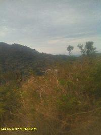 7000 Bigha Farm Land for Sale in Morni Hills, Panchkula