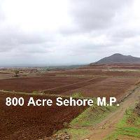 800 Acre Farm Land for Sale in Sehore