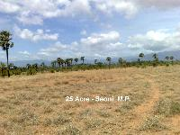 25 Ares Farm Land for Sale in Lakhnadon, Seoni