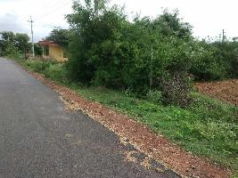 1.5 Acre Farm Land for Sale in Hoskote, Bangalore