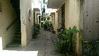 2 BHK 1000 Sq.ft. Residential Apartment for Rent in Chennai