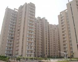 3 BHK Flat for Sale in Sector 86, Faridabad
