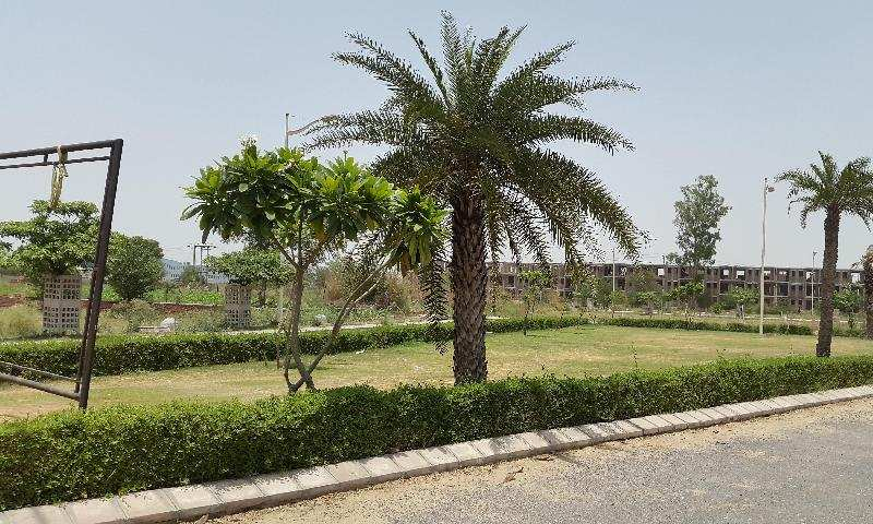 Residential Plot for Sale in Sector 14, Bahadurgarh - 193 Sq. Yards