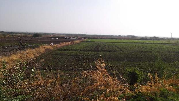 7 Bigha Farm Land for Sale in Notada, Bundi