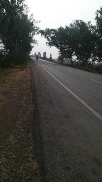 24 Bigha Farm Land for Sale in Indragarh, Bundi
