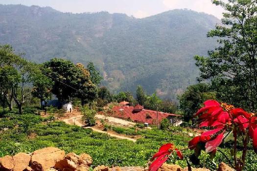 3 BHK 2500 Sq.ft. House & Villa for Sale in Kotagiri, Nilgiris