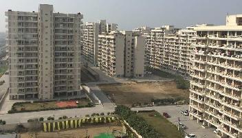 2 BHK Flat for Rent in Kundli TDI City, Kundli, Sonipat