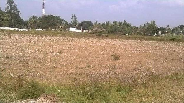 86 Bigha Residential Plot for Sale in Alwar Bypass Road, Bhiwadi