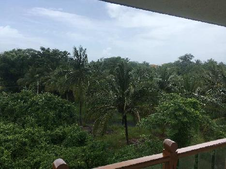 1 BHK 83 Sq. Meter Residential Apartment for Sale in Vagator, Goa