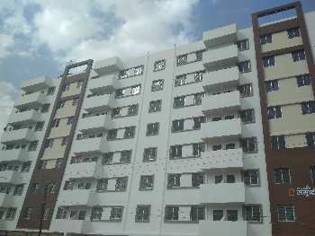 2 BHK 1136 Sq.ft. Residential Apartment for Sale in Amroli, Surat